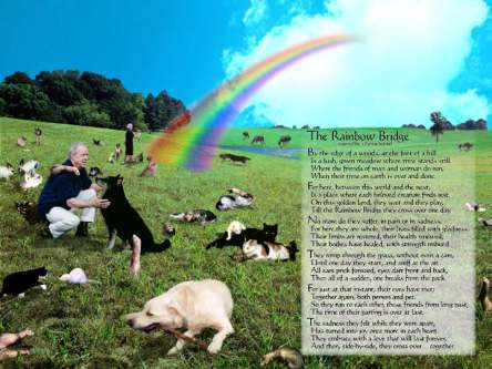 The Rainbow Bridge - click for story